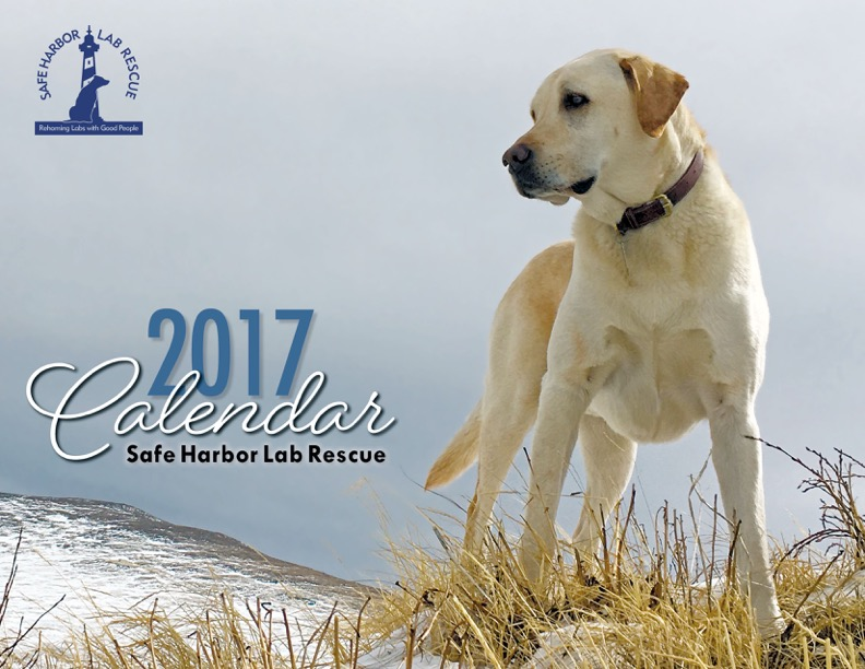 2017 SHLR Calendar cover