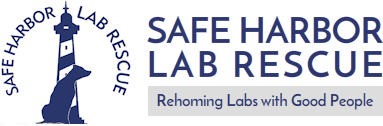 Safe Harbor Lab Rescue Retina Logo
